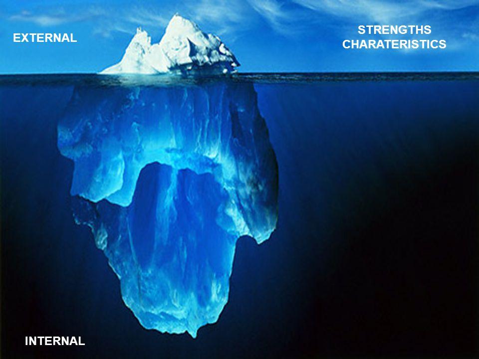 STRENGTHS CHARATERISTICS INTERNAL EXTERNAL