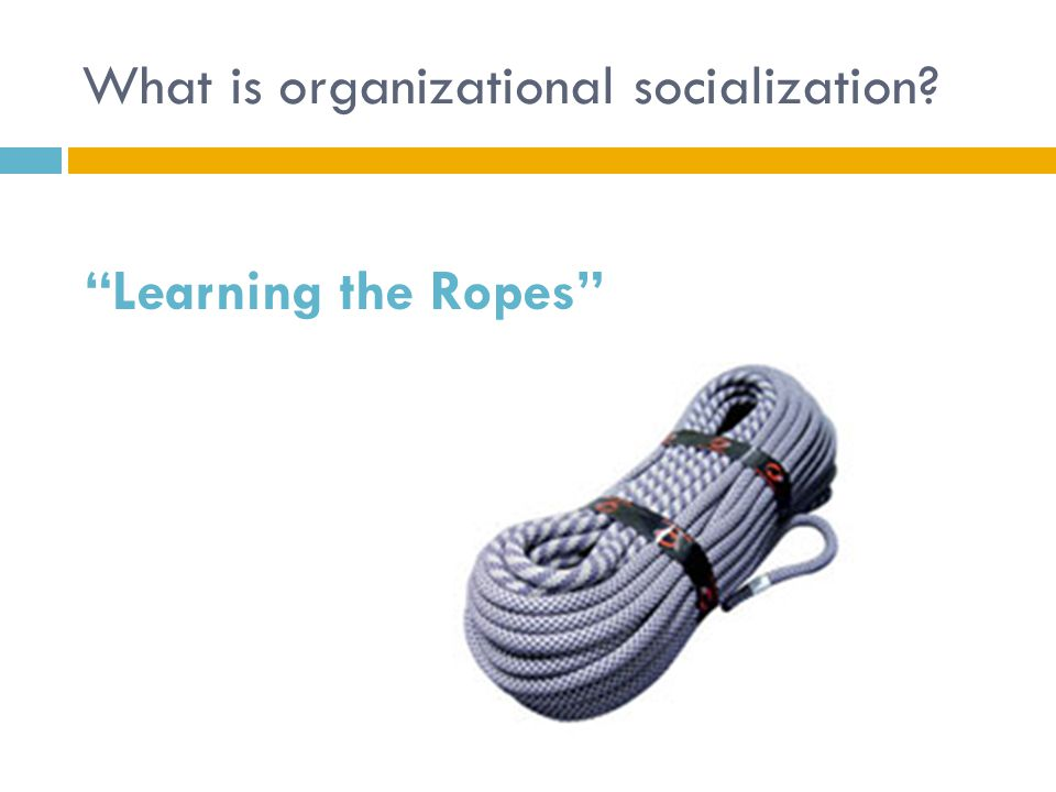 What is organizational socialization? Learning the Ropes