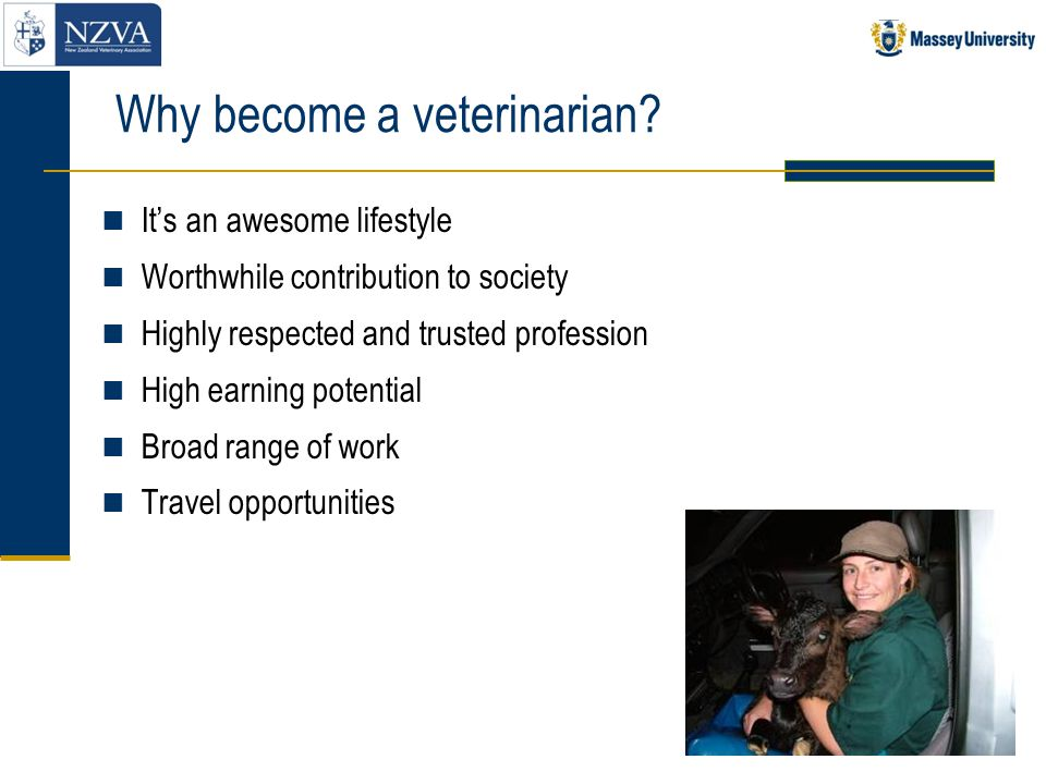 Selection criteria for Vet School (cont) Graduates or part-graduates Must be eligible for selection No limit on number of times you can apply for selection Two-year rule (grades obtained over last four full-time semesters of study count towards GPA) Three-year rule (if an applicant has had a break from university study for 3 years, then only grades obtained since re-starting full- time study are used in the GPA calculation) STAT F test - can be carry forward result or re-sit.