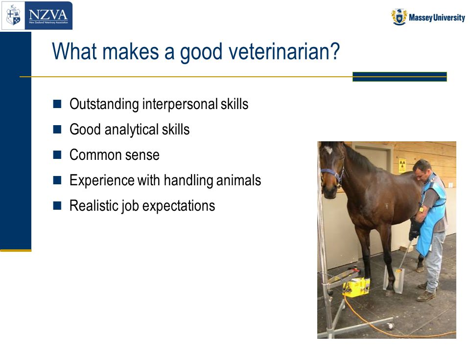 Areas of veterinarian work Clinical practice Treating sick or injured animals Diagnosis of cause of disease Surgery Anaesthesia X-rays Disease prevention Vaccination Design health programmes for farm animals