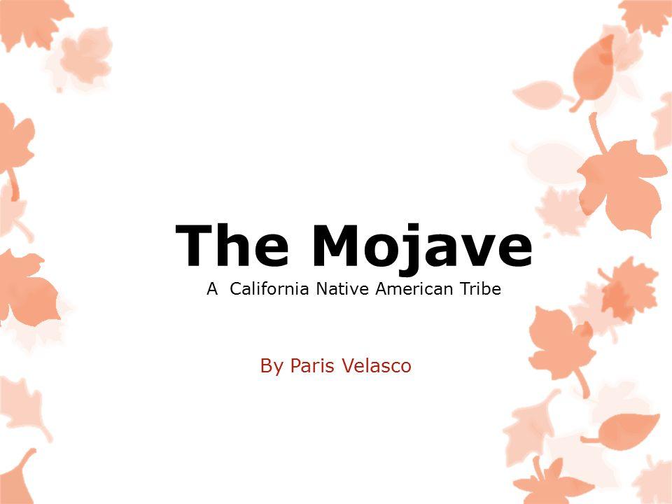 The Mojave A California Native American Tribe By Paris Velasco