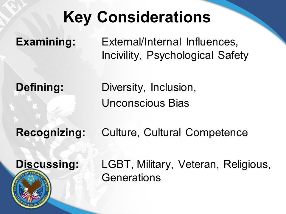 The VA's D&I Strategic Plan 1.A Diverse Workforce 2.An Inclusive Workplace 3.Outstanding Public Service D&I Strategic Plan
