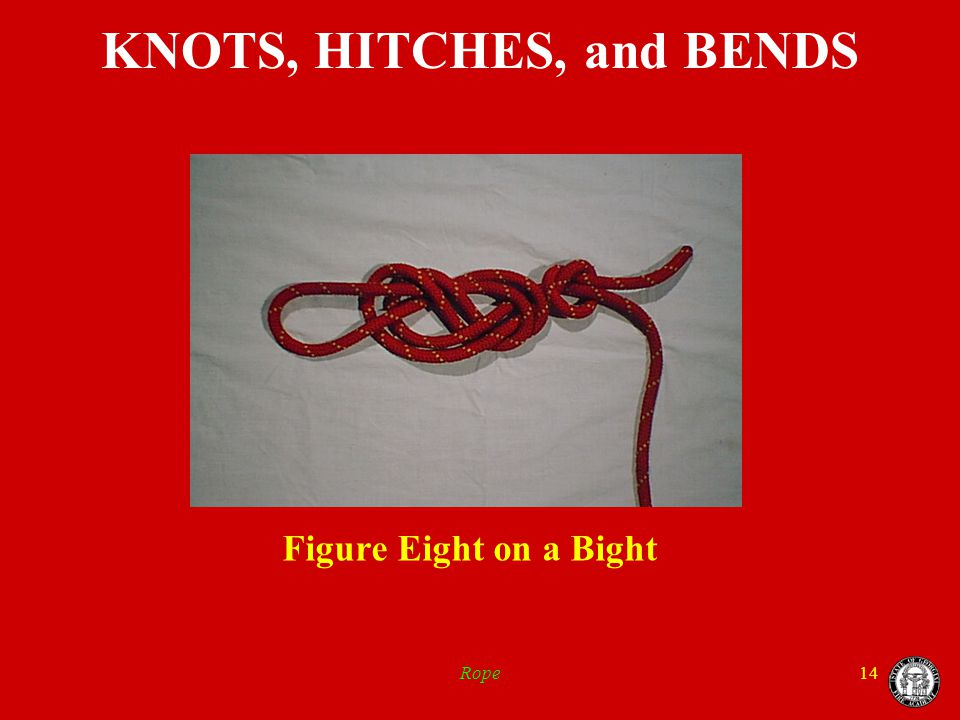 Rope14 KNOTS, HITCHES, and BENDS Figure Eight on a Bight