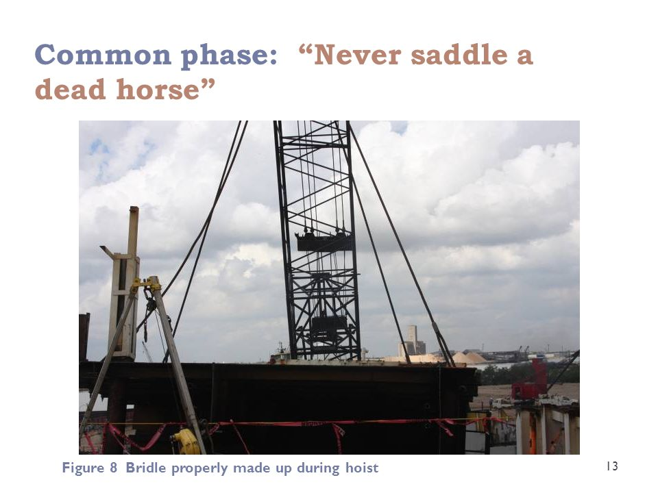 """Common phase: """"Never saddle a dead horse"""" 13 Figure 8 Bridle properly made up during hoist"""