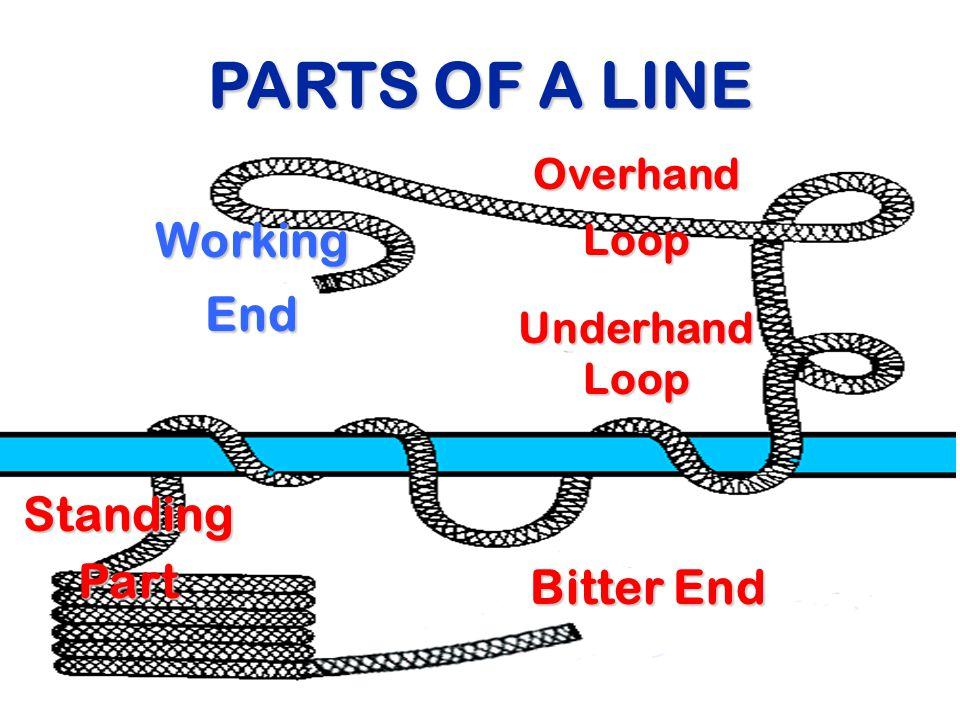 PARTS OF A LINE WorkingEnd Bitter End StandingPart OverhandLoop Underhand Loop