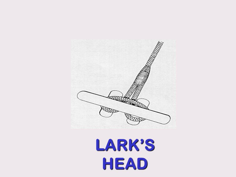 LARK'S HEAD