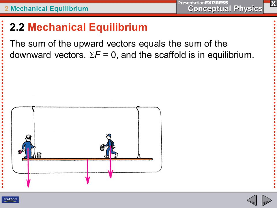 2 Mechanical Equilibrium The sum of the upward vectors equals the sum of the downward vectors.  F = 0, and the scaffold is in equilibrium. 2.2 Mechan
