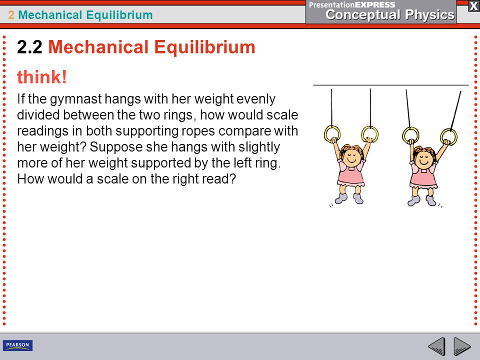 2 Mechanical Equilibrium think! If the gymnast hangs with her weight evenly divided between the two rings, how would scale readings in both supporting