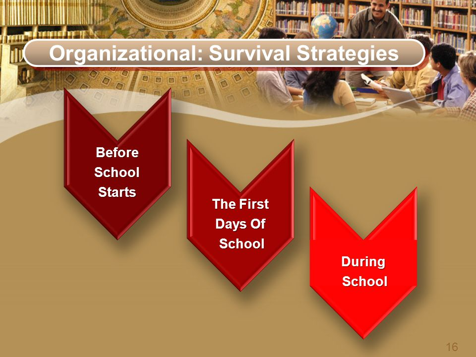 Organizational: Survival Strategies BeforeSchoolStarts The First Days Of School School During 16