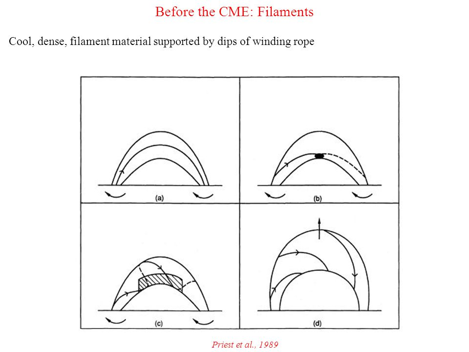 Before the CME: Filaments Cool, dense, filament material supported by dips of winding rope Priest et al., 1989