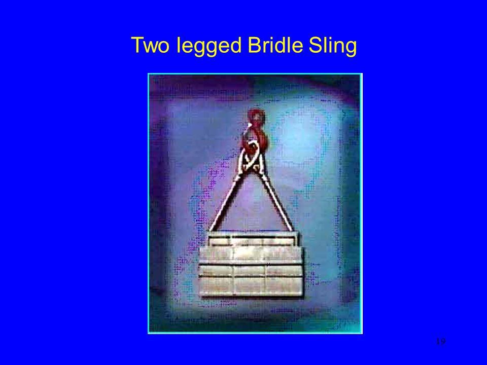 19 Two legged Bridle Sling