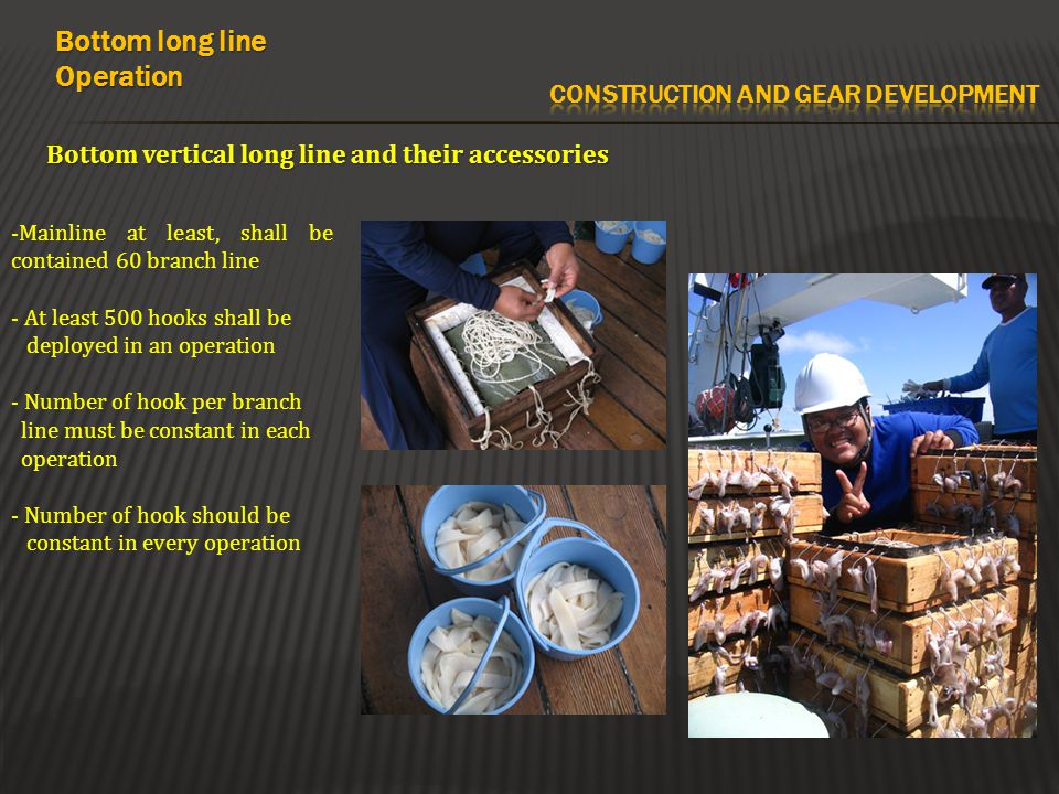 Bottom vertical long line and their accessories Bottom long line Operation -Mainline at least, shall be contained 60 branch line - At least 500 hooks