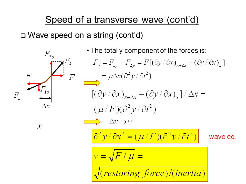 Speed of a transverse wave (cont'd)  Wave speed on a string (cont'd) The total y component of the forces is: wave eq.