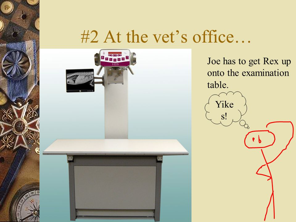 #2 At the vet's office… Joe has to get Rex up onto the examination table. Yike s!