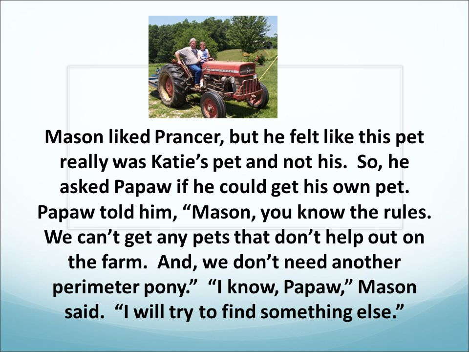 Mason liked Prancer, but he felt like this pet really was Katie's pet and not his.
