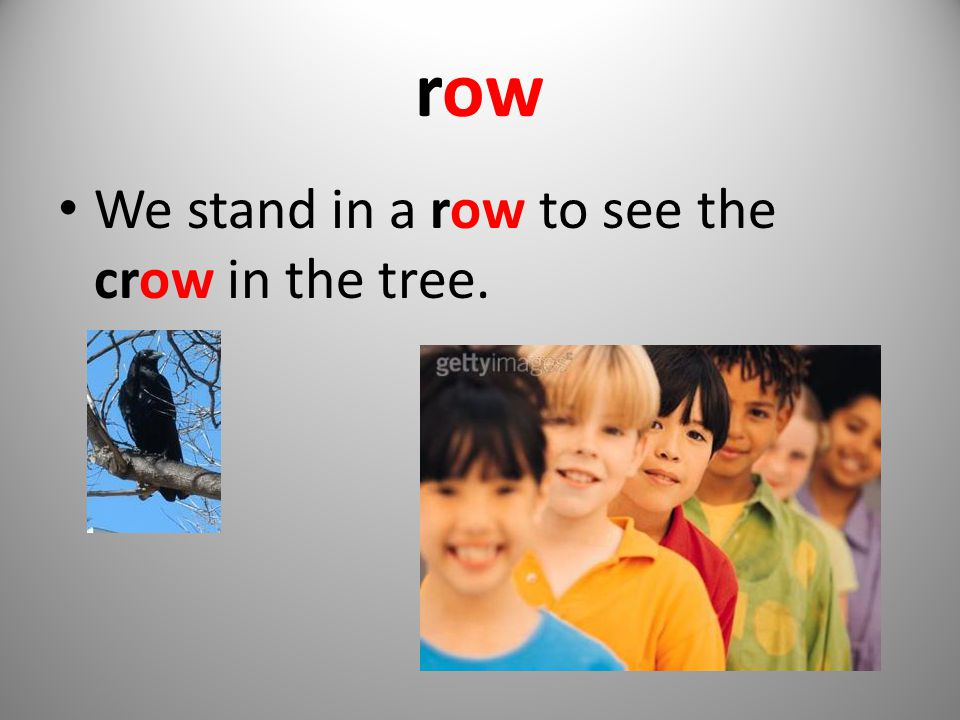 row We stand in a row to see the crow in the tree.