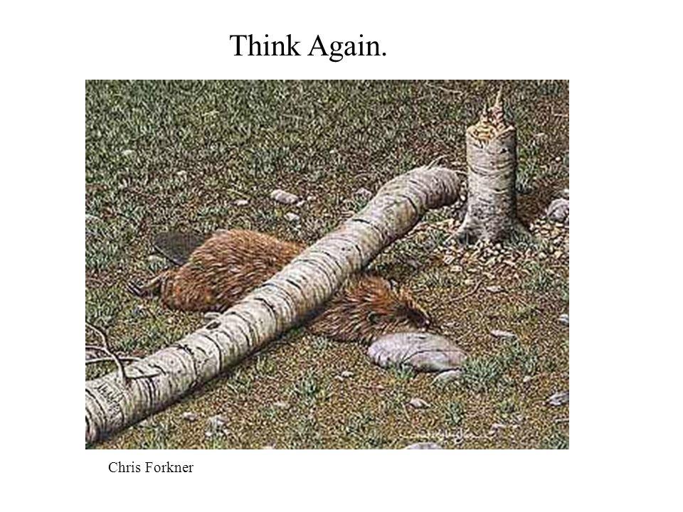 Think Again. Chris Forkner