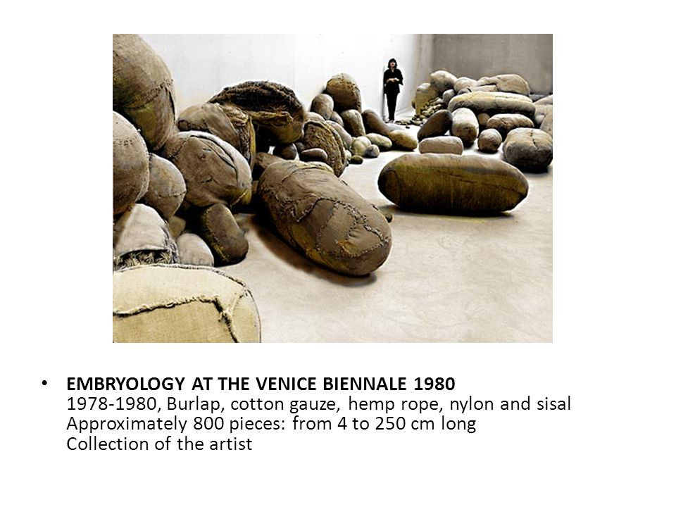 EMBRYOLOGY AT THE VENICE BIENNALE 1980 1978-1980, Burlap, cotton gauze, hemp rope, nylon and sisal Approximately 800 pieces: from 4 to 250 cm long Col