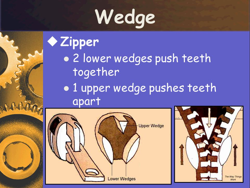 Wedge  Zipper 2 lower wedges push teeth together 1 upper wedge pushes teeth apart