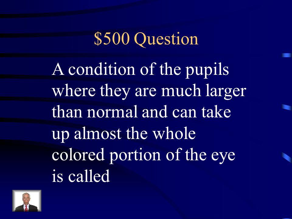 $400 Answer Brachial