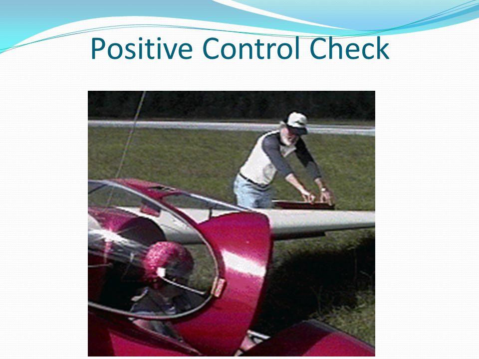 Positive Control Check