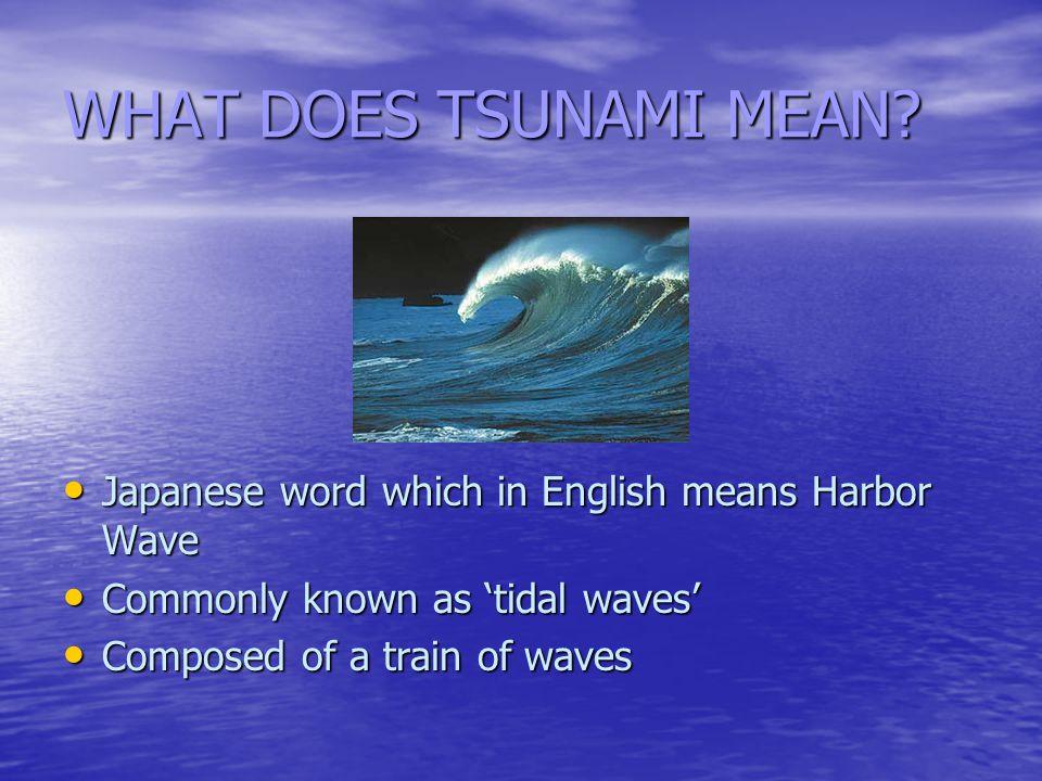 WHAT DOES TSUNAMI MEAN.