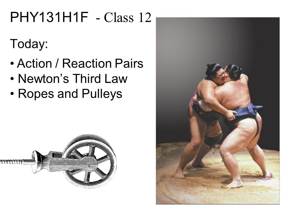 PHY131H1F - Class 12 Today: Action / Reaction Pairs Newton's Third Law Ropes and Pulleys