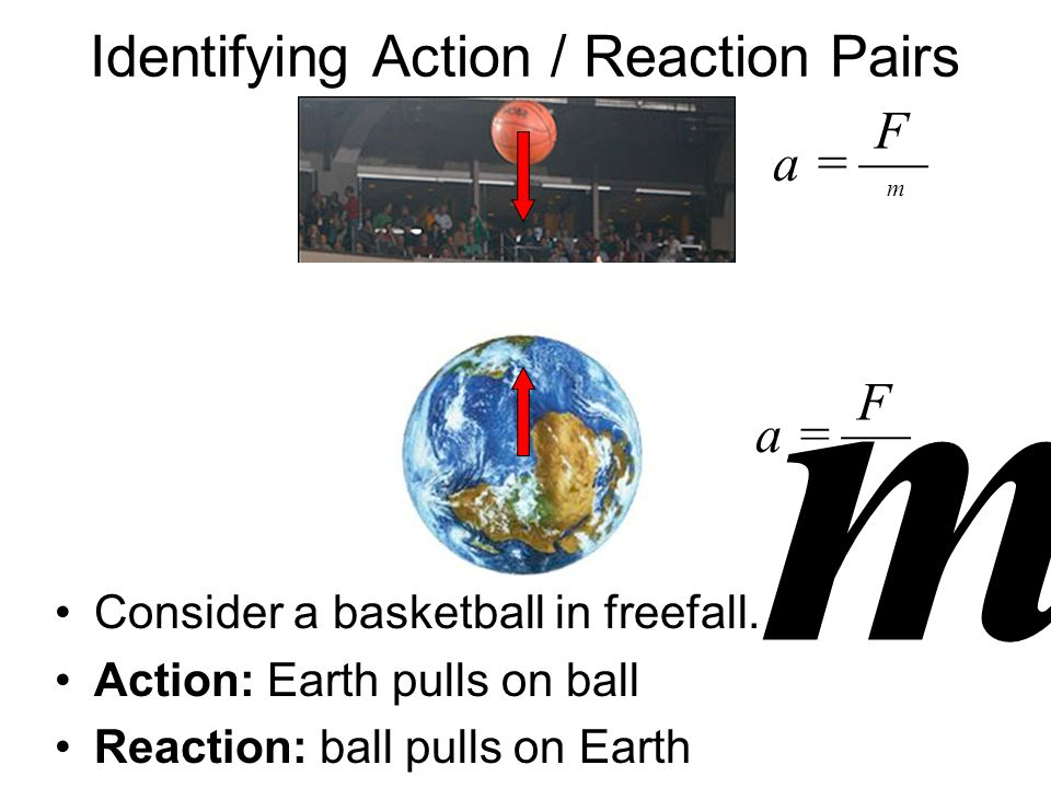Identifying Action / Reaction Pairs Consider a basketball in freefall.