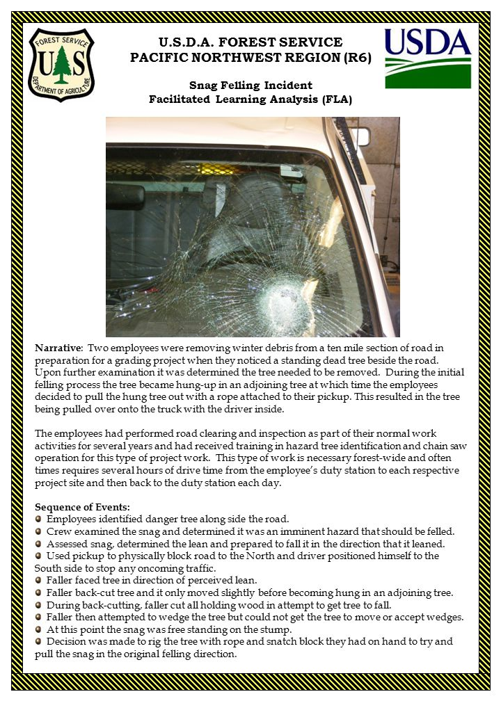 U.S.D.A. FOREST SERVICE PACIFIC NORTHWEST REGION (R6) Snag Felling Incident Facilitated Learning Analysis (FLA) Narrative : Two employees were removin