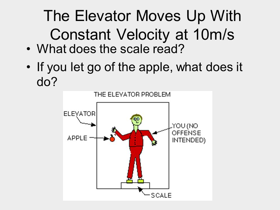 The Elevator Moves Up With Constant Velocity at 10m/s What does the scale read? If you let go of the apple, what does it do?