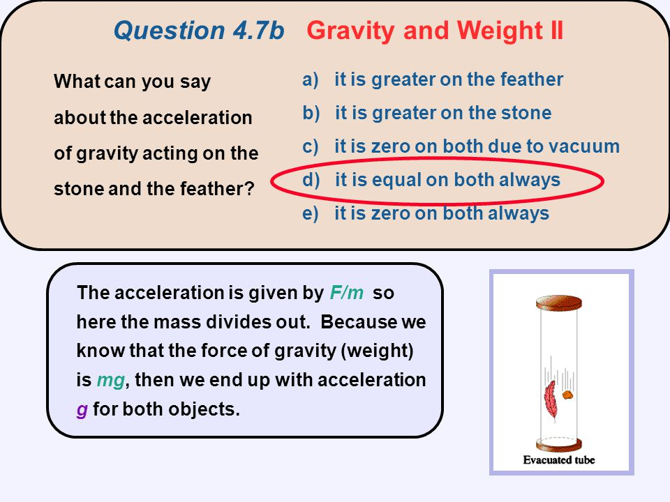 The acceleration is given by F/m so here the mass divides out. Because we know that the force of gravity (weight) is mg, then we end up with accelerat