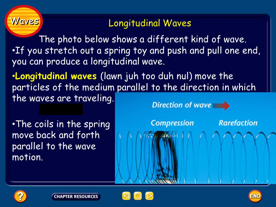 Waves Longitudinal Waves The photo below shows a different kind of wave.