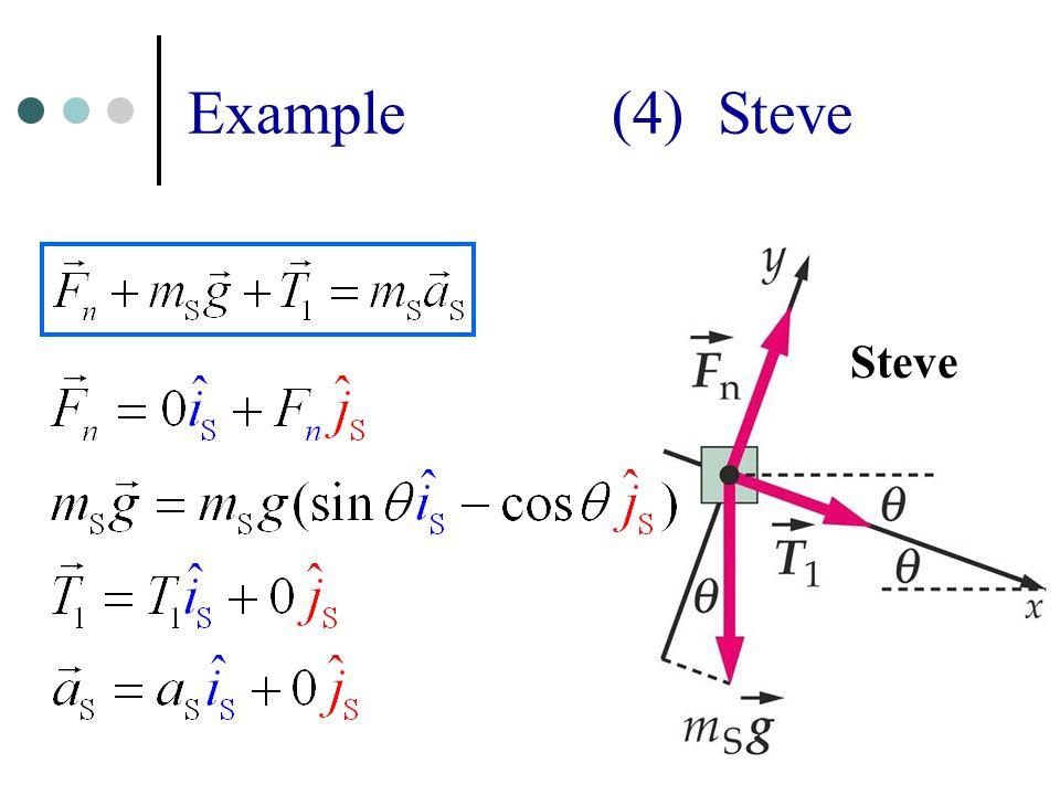 13 Example (4) Steve Steve