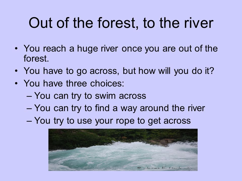 Out of the forest, to the river You reach a huge river once you are out of the forest. You have to go across, but how will you do it? You have three c