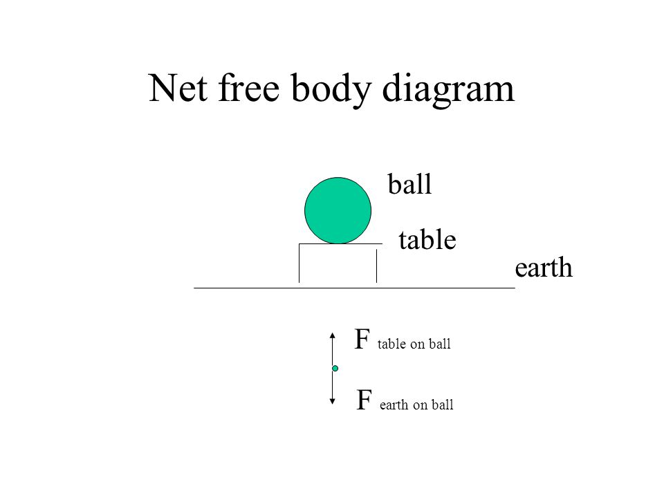 Net free body diagram ball table earth F table on ball F earth on ball