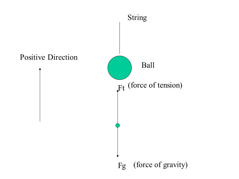 Ft gF Ball String (force of tension) (force of gravity) Positive Direction
