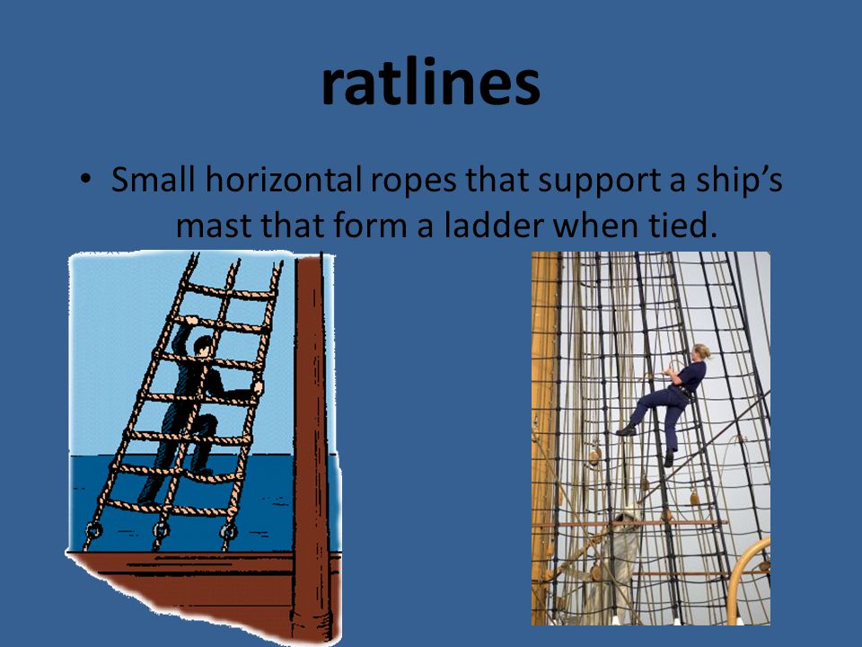 ratlines Small horizontal ropes that support a ship's mast that form a ladder when tied.