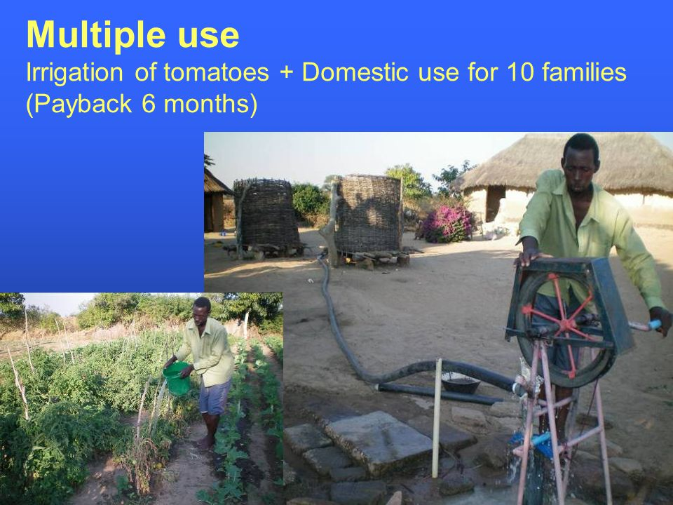 Multiple use Irrigation of tomatoes + Domestic use for 10 families (Payback 6 months)