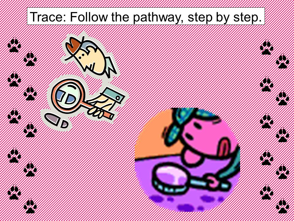 Trace: Follow the pathway, step by step.