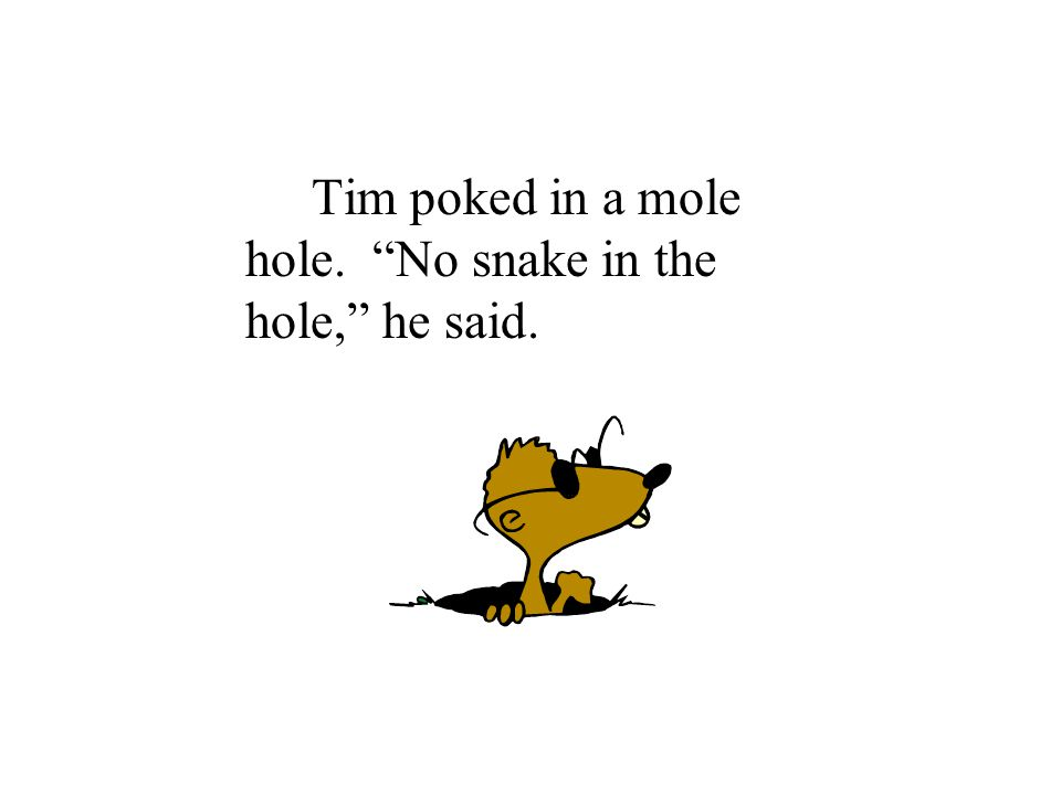 Tim poked in a mole hole. No snake in the hole, he said.