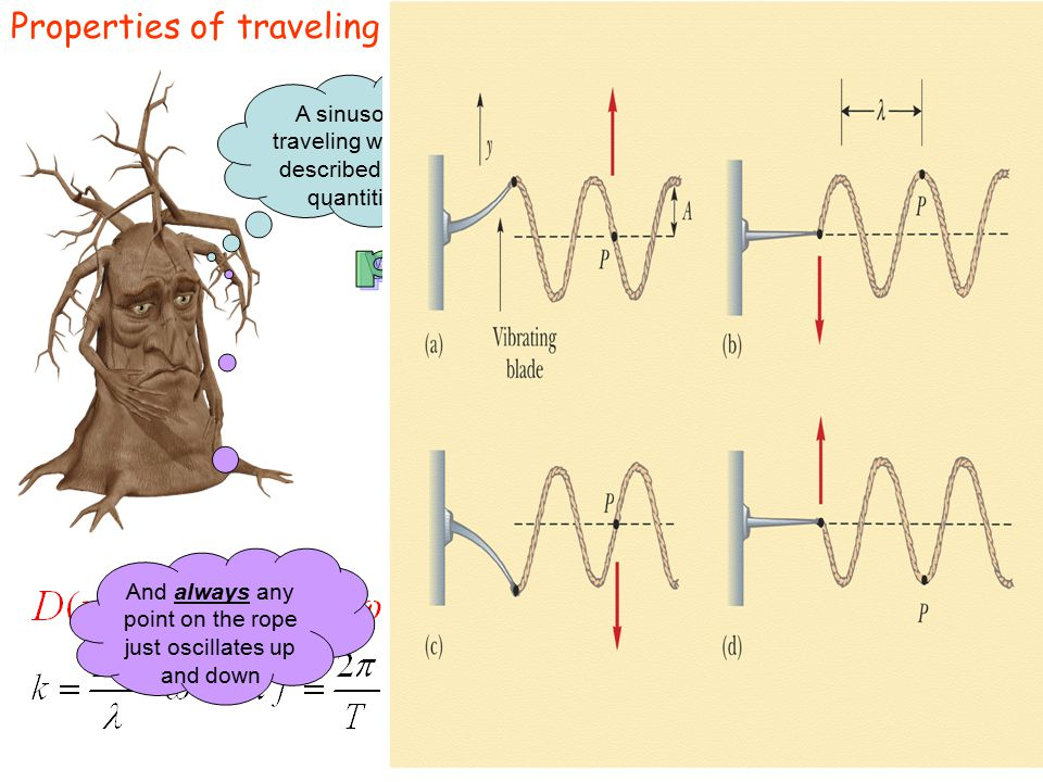 Properties of traveling waves A sinusoidal traveling wave is described by 4 quantities And always any point on the rope just oscillates up and down