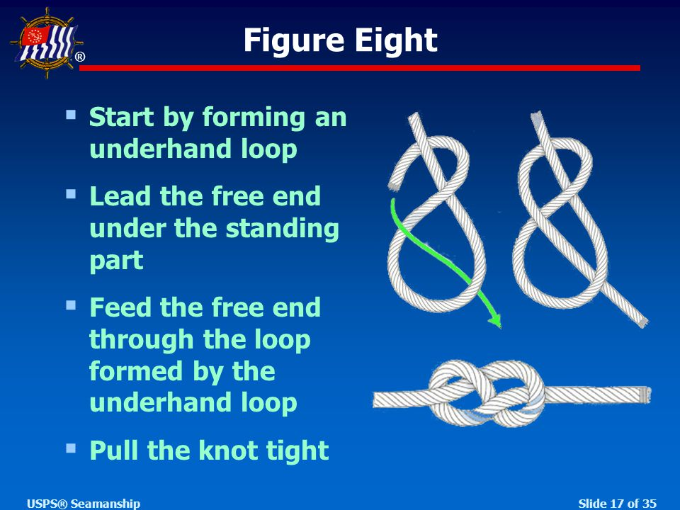 ® Slide 17 of 35USPS® Seamanship  Start by forming an underhand loop  Lead the free end under the standing part  Feed the free end through the loop formed by the underhand loop  Pull the knot tight Figure Eight