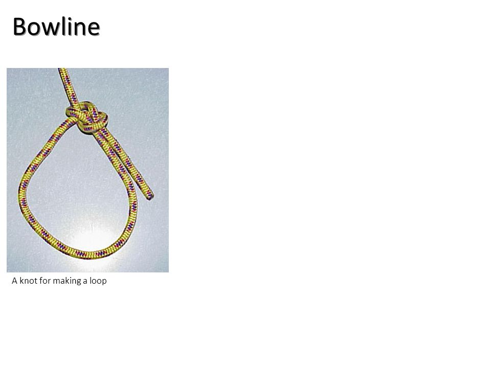 Bowline A knot for making a loop
