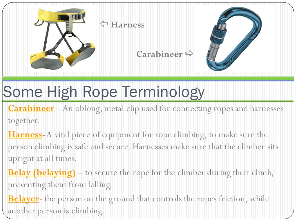 Some High Rope Terminology Carabineer – An oblong, metal clip used for connecting ropes and harnesses together.