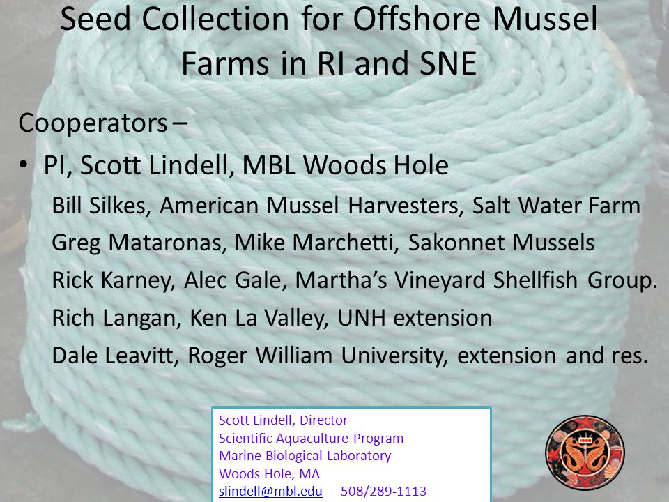Scott Lindell, Director Scientific Aquaculture Program Marine Biological Laboratory Woods Hole, MA slindell@mbl.eduslindell@mbl.edu 508/289-1113 Seed Collection for Offshore Mussel Farms in RI and SNE Cooperators – PI, Scott Lindell, MBL Woods Hole Bill Silkes, American Mussel Harvesters, Salt Water Farm Greg Mataronas, Mike Marchetti, Sakonnet Mussels Rick Karney, Alec Gale, Martha's Vineyard Shellfish Group.