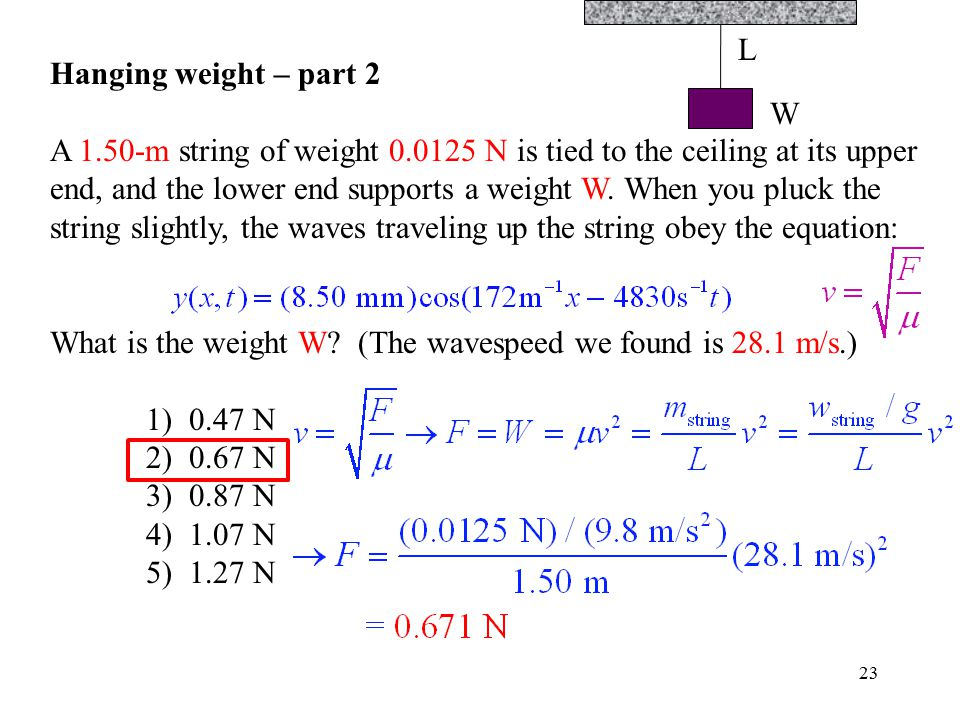 23 Hanging weight – part 2 A 1.50-m string of weight 0.0125 N is tied to the ceiling at its upper end, and the lower end supports a weight W. When you