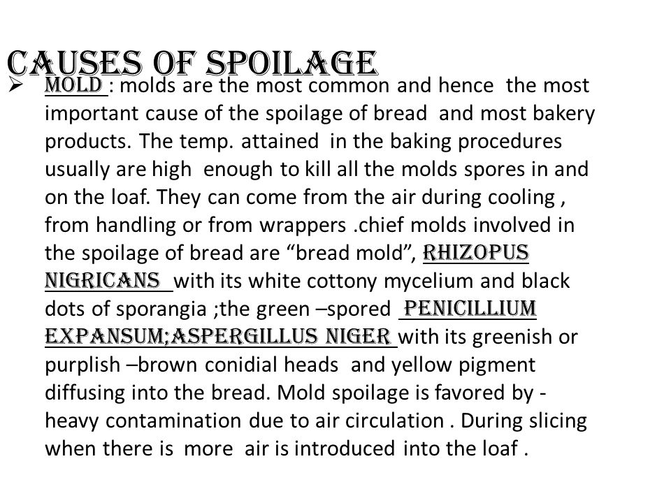 Causes of spoilage  Mold : molds are the most common and hence the most important cause of the spoilage of bread and most bakery products. The temp.