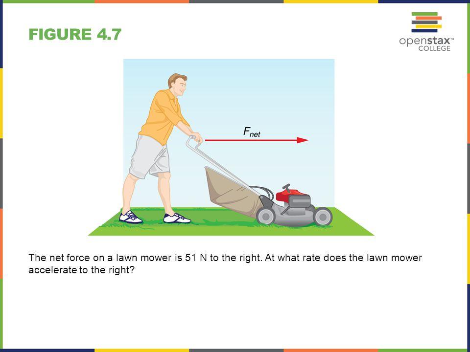 FIGURE 4.40 Achilles tendon