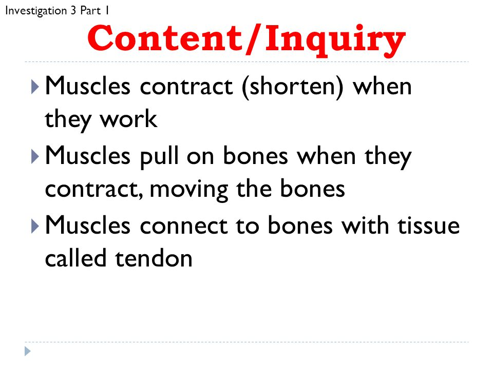 Vocabulary  Tissue  Muscle  Contract  Tendon ADD these words to your GLOSSARY.