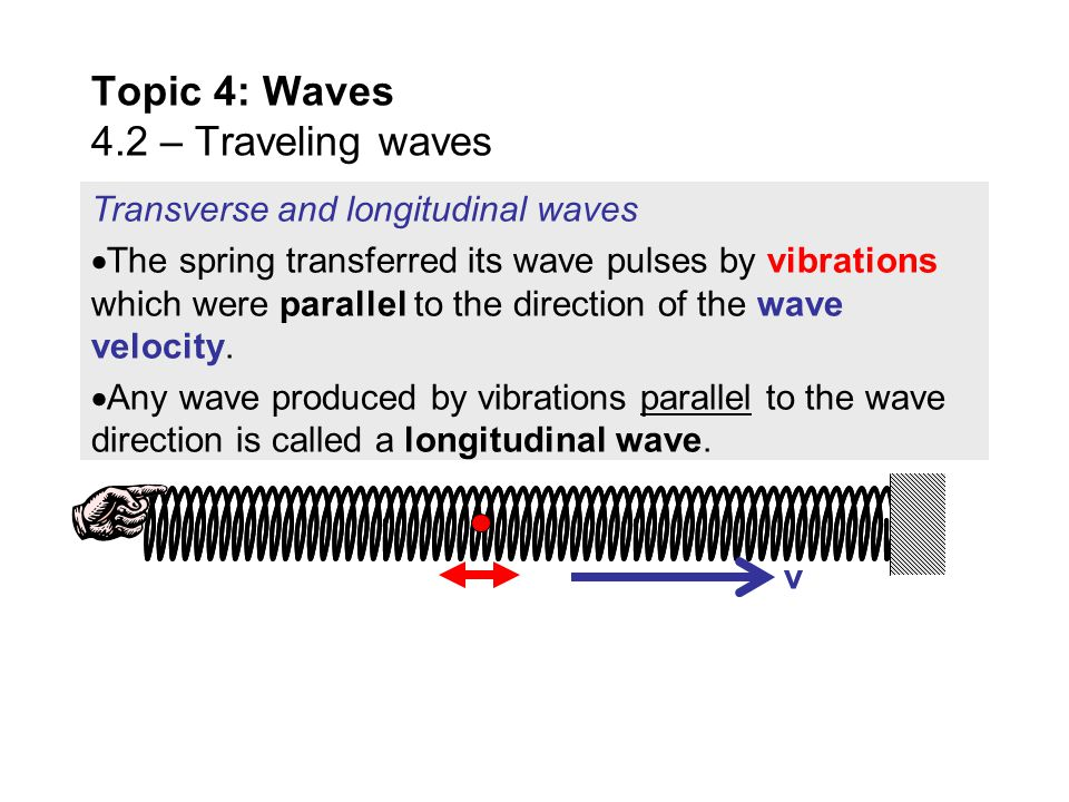 Topic 4: Waves 4.2 – Traveling waves v Transverse and longitudinal waves  Both the rope and the spring were examples of traveling waves, and both tra